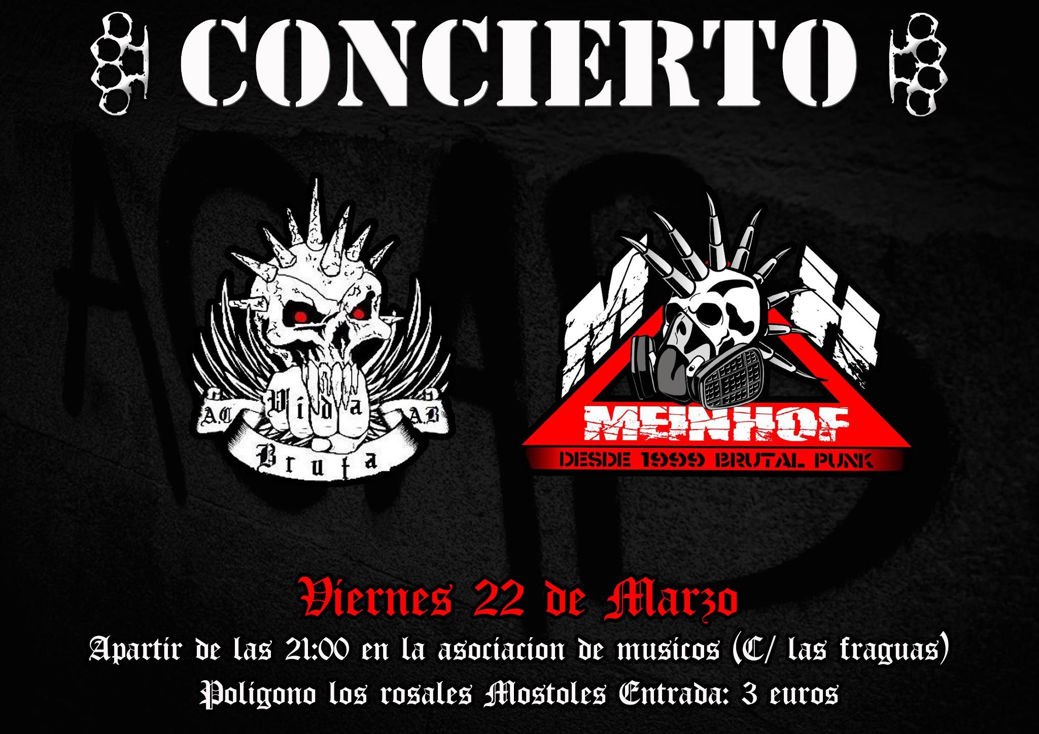 cartel concierto punk vida bruta mein hof viernes 22 marzo 2013
